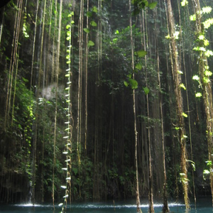 """Cenotes • <a style=""""font-size:0.8em;"""" href=""""http://www.flickr.com/photos/70723747@N06/13282154194/"""" target=""""_blank"""">View on Flickr</a>"""