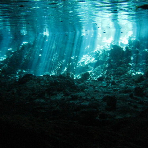 """Cenotes • <a style=""""font-size:0.8em;"""" href=""""http://www.flickr.com/photos/70723747@N06/13281825535/"""" target=""""_blank"""">View on Flickr</a>"""
