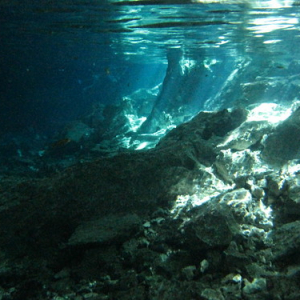 """Cenotes • <a style=""""font-size:0.8em;"""" href=""""http://www.flickr.com/photos/70723747@N06/13281827765/"""" target=""""_blank"""">View on Flickr</a>"""