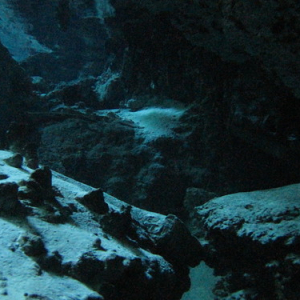 """Cenotes • <a style=""""font-size:0.8em;"""" href=""""http://www.flickr.com/photos/70723747@N06/13281824195/"""" target=""""_blank"""">View on Flickr</a>"""