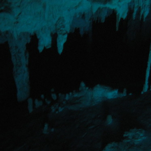 """Cenotes • <a style=""""font-size:0.8em;"""" href=""""http://www.flickr.com/photos/70723747@N06/13282169794/"""" target=""""_blank"""">View on Flickr</a>"""