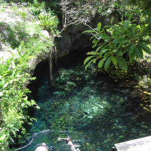 """Cenotes • <a style=""""font-size:0.8em;"""" href=""""http://www.flickr.com/photos/70723747@N06/13282168084/"""" target=""""_blank"""">View on Flickr</a>"""
