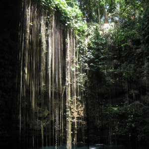 "Cenotes • <a style=""font-size:0.8em;"" href=""http://www.flickr.com/photos/70723747@N06/13281801575/"" target=""_blank"">View on Flickr</a>"