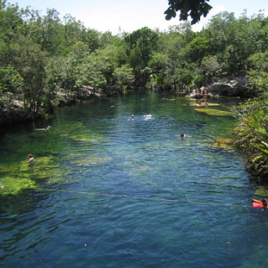 "Cenotes • <a style=""font-size:0.8em;"" href=""http://www.flickr.com/photos/70723747@N06/13281964143/"" target=""_blank"">View on Flickr</a>"