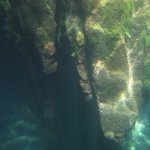"""Cenotes • <a style=""""font-size:0.8em;"""" href=""""http://www.flickr.com/photos/70723747@N06/13282157654/"""" target=""""_blank"""">View on Flickr</a>"""