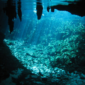 "Cenotes • <a style=""font-size:0.8em;"" href=""http://www.flickr.com/photos/70723747@N06/13282174864/"" target=""_blank"">View on Flickr</a>"