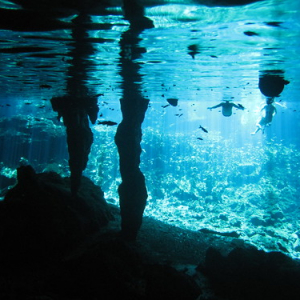 "Cenotes • <a style=""font-size:0.8em;"" href=""http://www.flickr.com/photos/70723747@N06/13281969023/"" target=""_blank"">View on Flickr</a>"