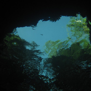 "Cenotes • <a style=""font-size:0.8em;"" href=""http://www.flickr.com/photos/70723747@N06/13281960463/"" target=""_blank"">View on Flickr</a>"